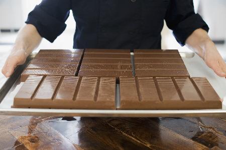 organic chocolate manufacturing a person holding a 8l84qjc